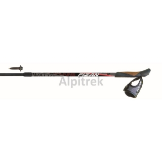 Fizan Nordic walking hole  NW SPEED - black